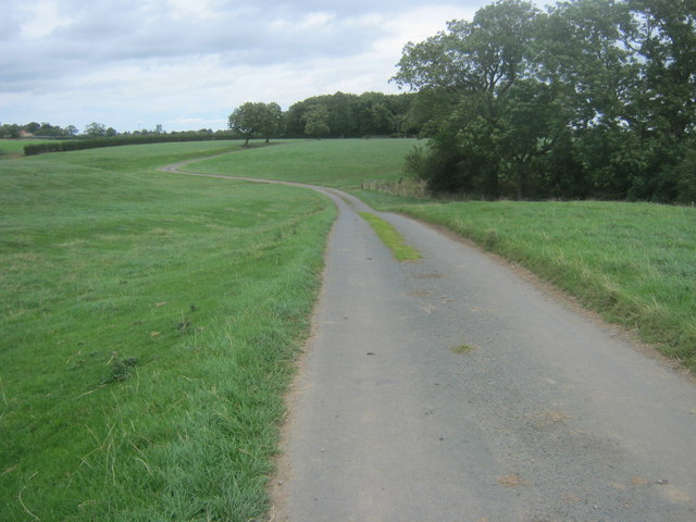 Road from Viewly Hill Farm to High Worsall