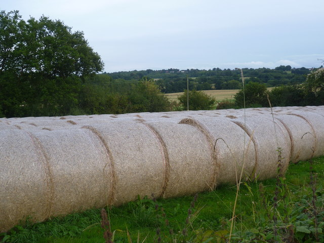 Hay bales at Ensfield