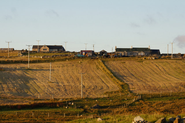 Silage fields at Newgord, Westing