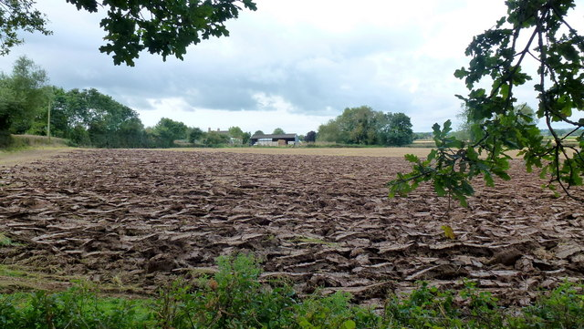 Ploughed field near Goldwick farm