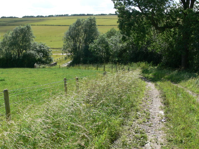 Track near the Welby Osier Beds