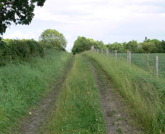 Track to Welby Lane
