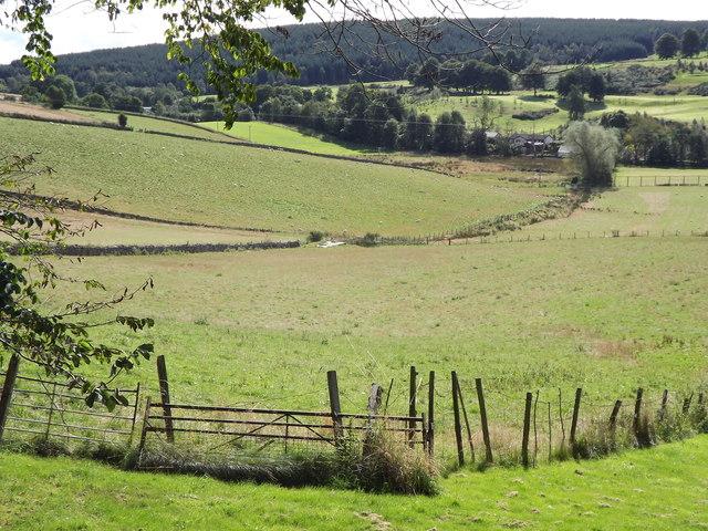 Lumphanan Fieldscape