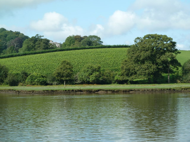Sharpham Point
