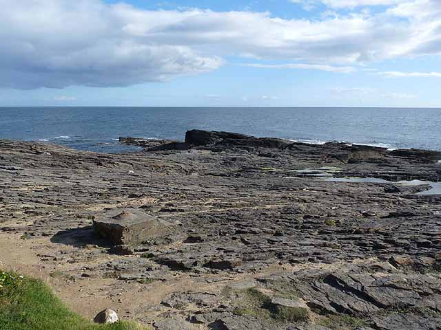 Coastal rocks at Hook Head