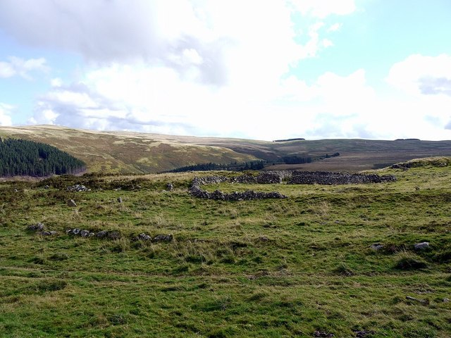 Settlement and modern sheepfold, Hartside Hill