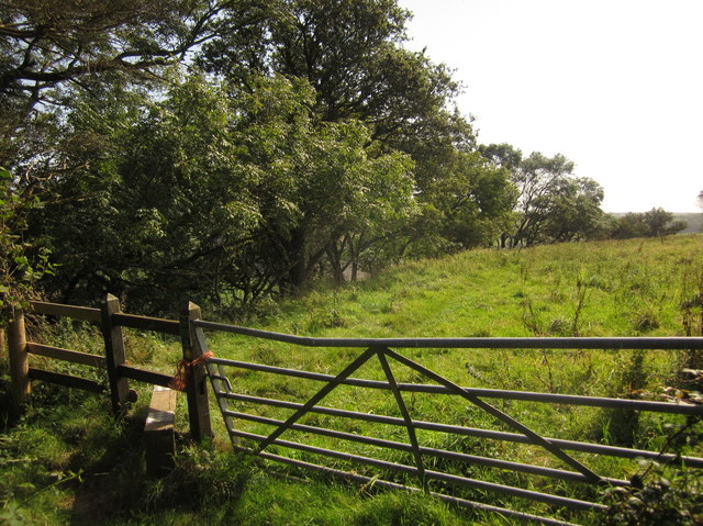 Gate and stile, Musbury Castle
