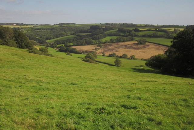 Hillside below Musbury Castle