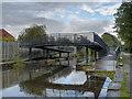 SD8800 : Rochdale Canal Bridge#80a by David Dixon