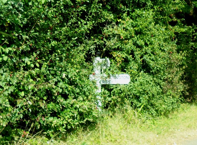 Direction sign in undergrowth near Berwick, East Sussex