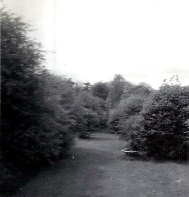 The rear garden of 164, Hanging Hill Lane
