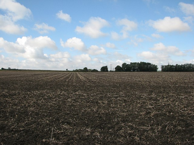 Ploughland and sky