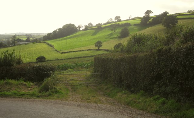 Farmland near Hills Farm