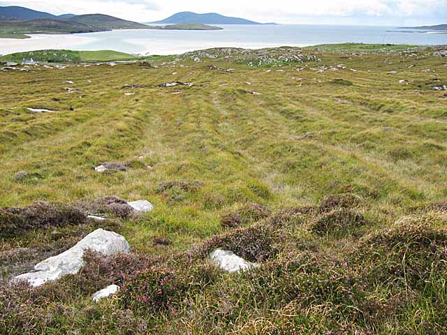 Old cultivation terraces near Losgaintir, Harris