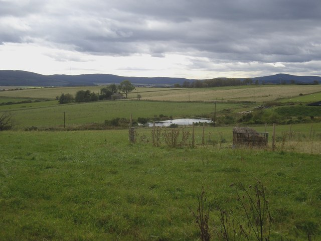 A view towards 'The Bowery' from near South Coldstream