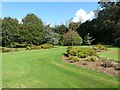 S7319 : The Ericaceous Garden, JF Kennedy Memorial Arboretum by Oliver Dixon