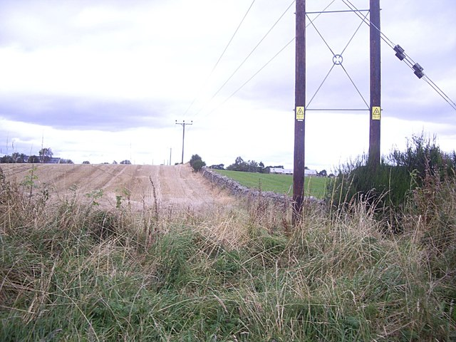 Boundary stone wall between fields