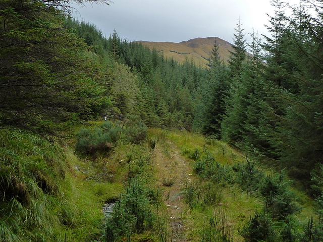 Glen Orchy Mountain Bike Trail