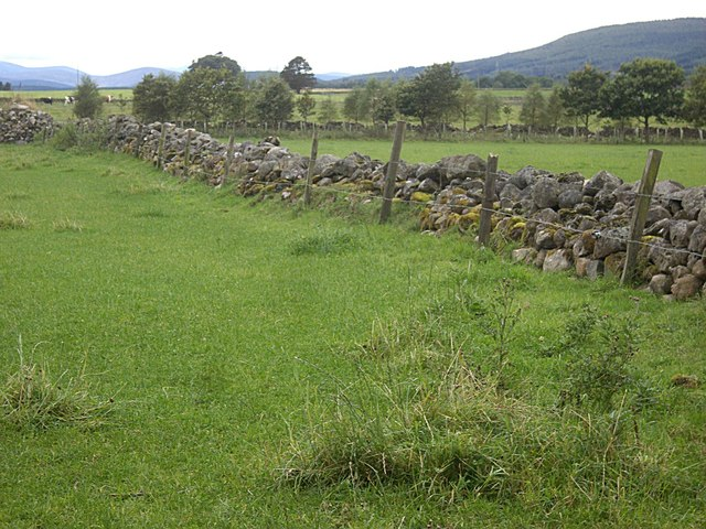 A boundary fence and wall