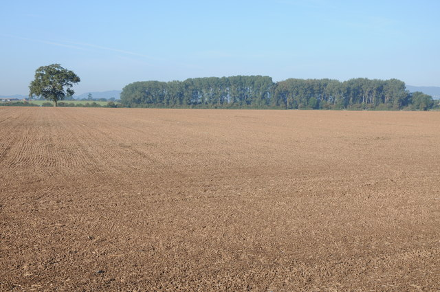 View across arable land to Smithmoor