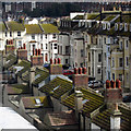 TQ8109 : Rooftops on Devonshire Road : Week 39
