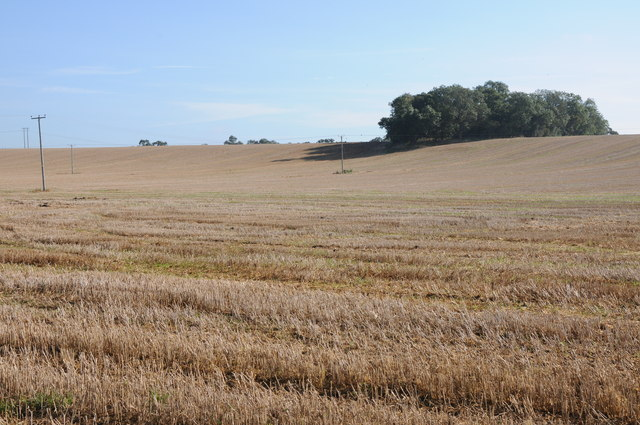 The Brakes and a stubble field