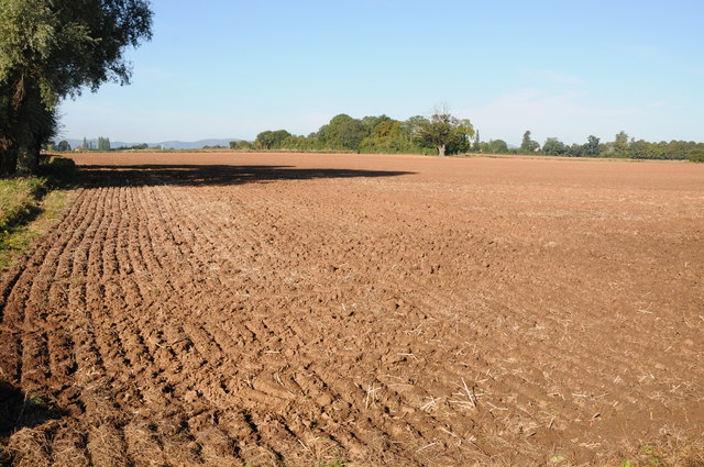 Ploughed field at Earl's Croome