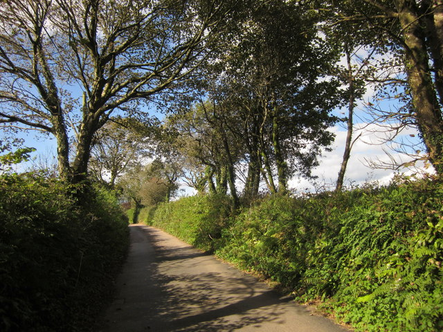 Lane at Ridge Lane Cross