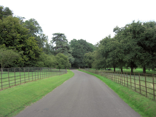 Unnamed lane through Leckford Arboretum