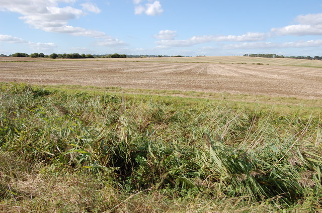 Farmland near Small Hythe