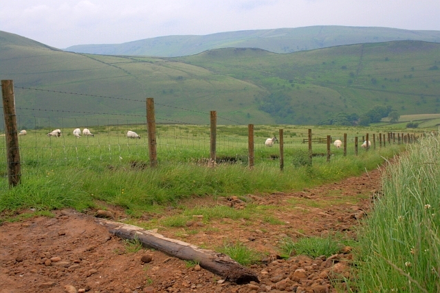 Bridleway to Coldwell Clough