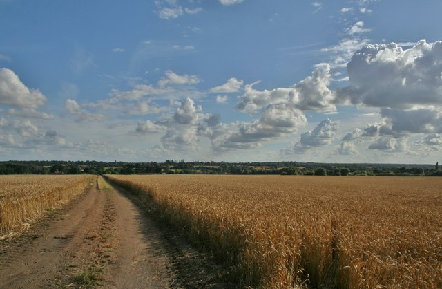 View of Moreton