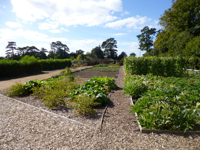 Kingston Lacy, kitchen garden