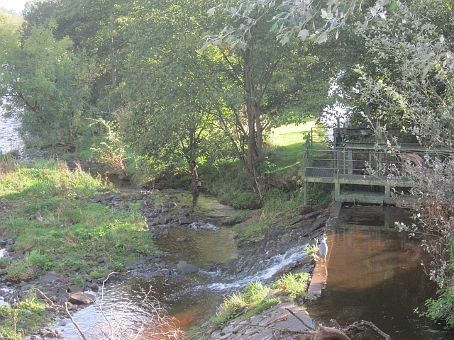 Weir, Bridge of Allan