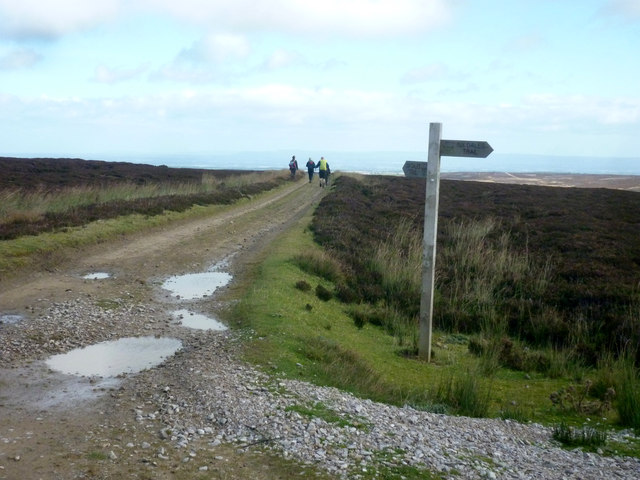 Fingerpost on Lulbeck Head