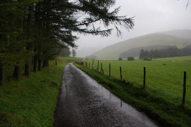 Track in Dyffryn Castell