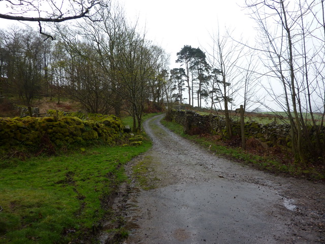 Track to Low Holme