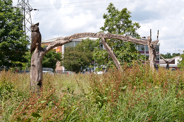 Chainsaw Sculpture, Woodbridge Meadows