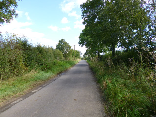 Cowgrove, country road