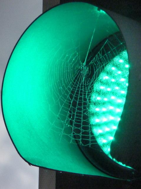 Bradford: a green cobweb