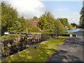SD8700 : Rochdale Canal, Scotchman's Lock by David Dixon