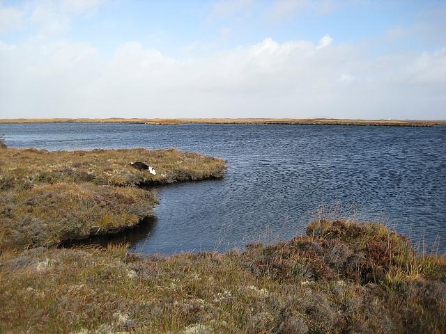 Loch a'Mhuill Mheadonaich