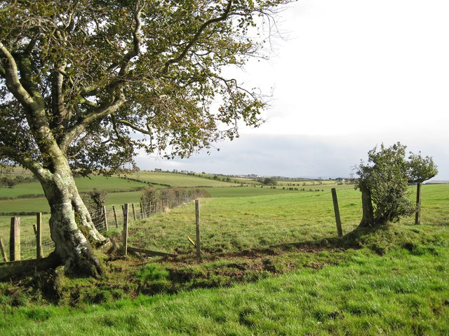 Field corner south of Catrine