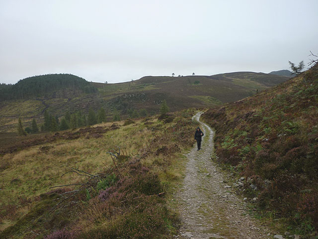 Climbing Birnam Hill on a wet day