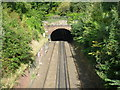 TQ4178 : Railway tunnel under Maryon Park by Ian Yarham