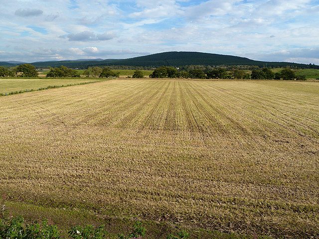 Farmland at Broomhill