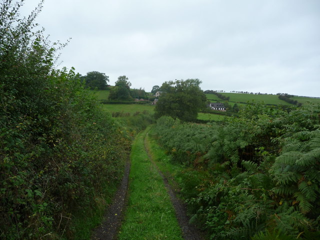 Bridleway near Llangyniew
