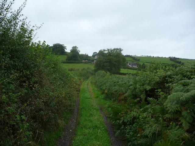 Bridleway near Llangyniew