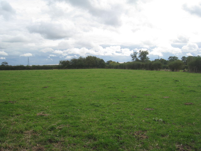 Field off Stone Road