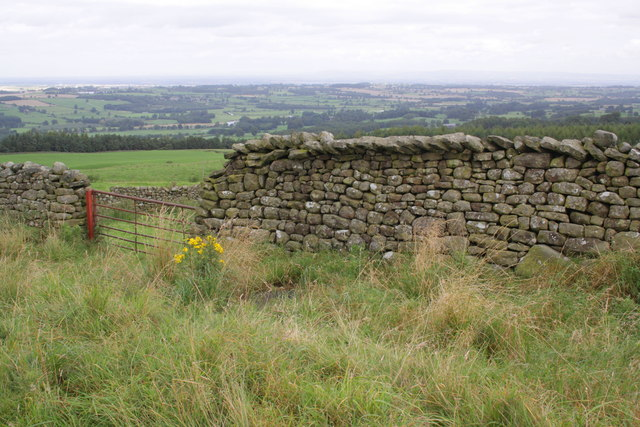 Gateway and dry stone wall beside Sowden Beck Road